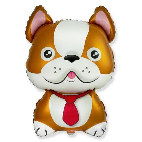 Brūns suns - hēlija balons