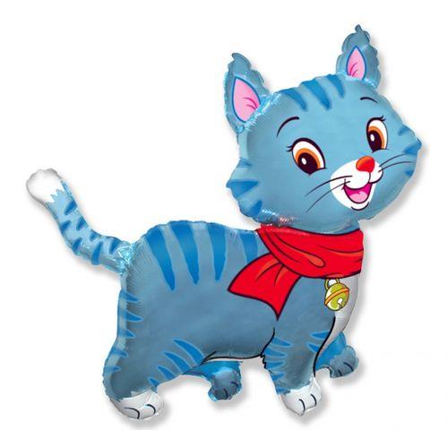 Zils kaķis